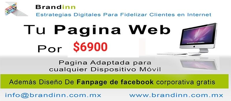 brandinn marketing digital